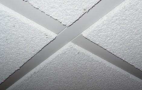Bat Drop Ceiling Tiles